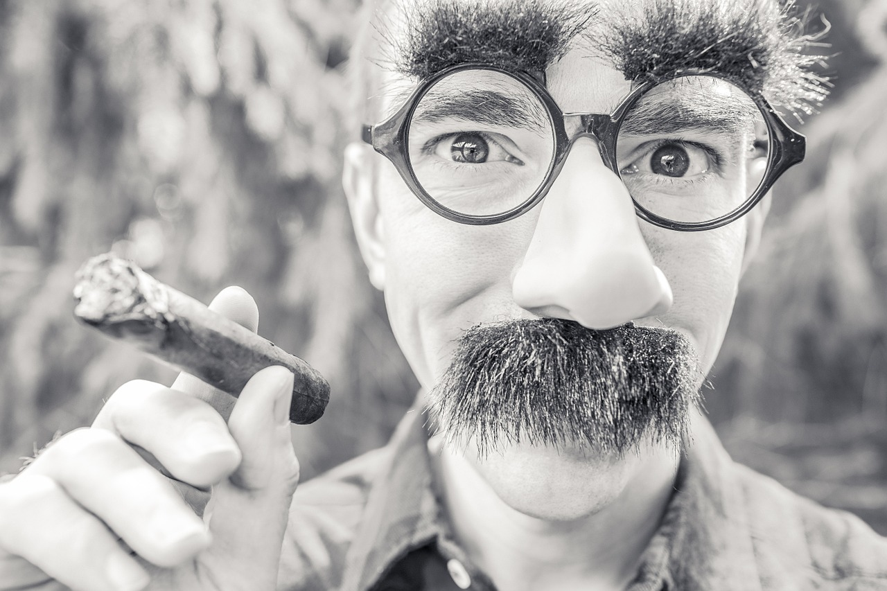 A man in a Groucho Marx mask (black plastic glass frames, big nose, big eyebrows, big mustache) and a holding a cigar