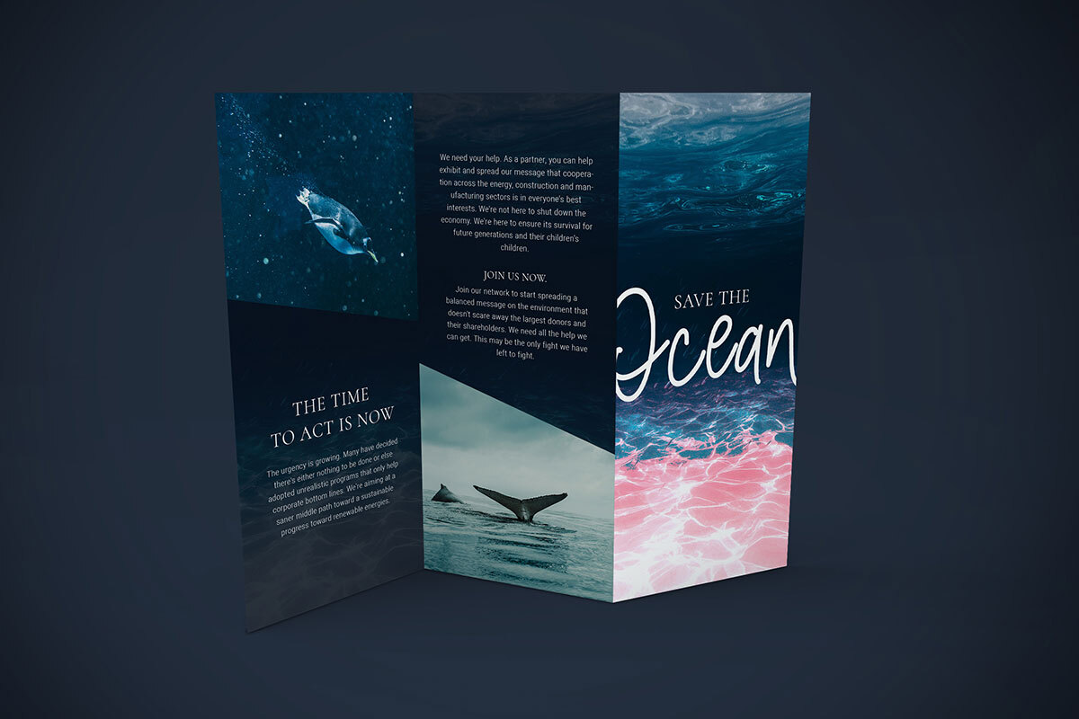 Ecology tri-fold brochure design example