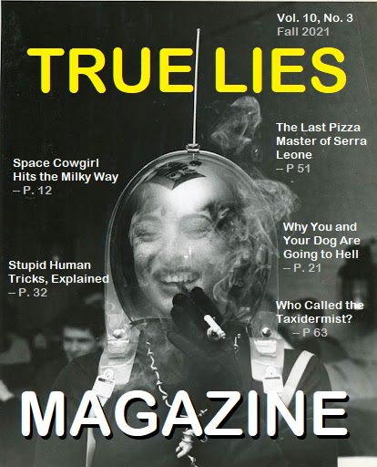 Space Woman - Odd Magazine Cover Examples (True Lies Magazine - Just a Mockup)